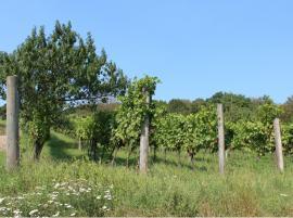 Über drei Berge zu Blumen und Wein-