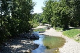 Ökologisches Projekt am Michelbach-