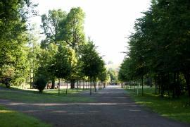 Park im Zentrum-